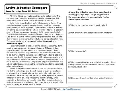 Active And Passive Transport Worksheet