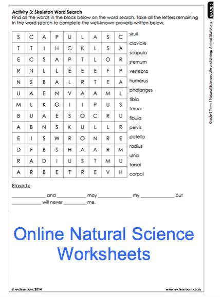Grade 5 Online Natural Science Worksheet, Skeleton  For More