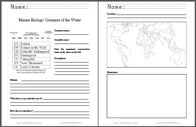 Marine Biology Fact Sheet For Kids