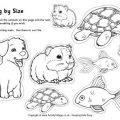 Pets Printable Worksheets