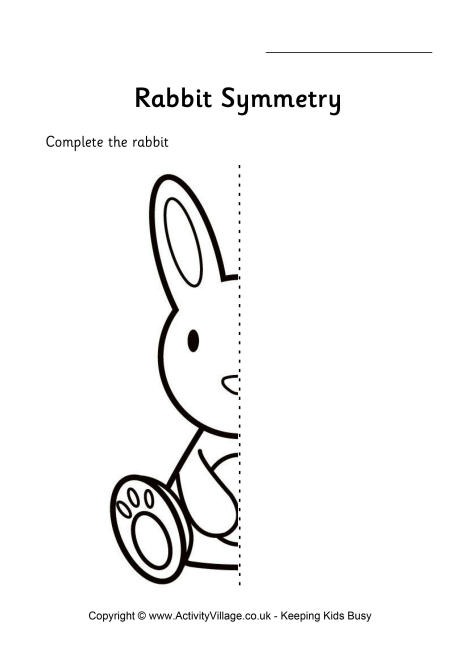 Animal Symmetry Worksheets