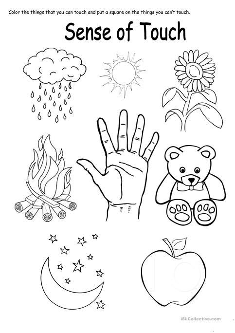 Sense Of Touch Worksheet Worksheets For All