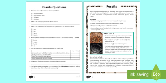 Fossils Reading Comprehension Year 3