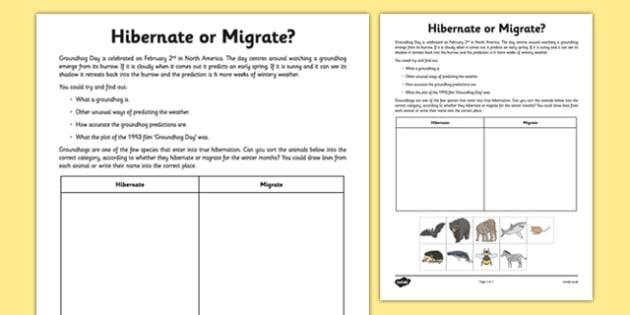 Hibernate Or Migrate  Groundhog Day Worksheet   Worksheet
