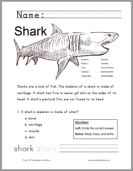 Free Printable Shark Worksheet For Grades 1