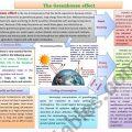 Environmental Problems Worksheets