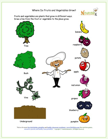 Kids Printable Learning About How Food Grows Free Gardening