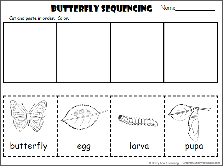 Butterfly Sequencing Cut And Paste (4 Free Pages)