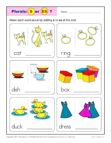 Easy Worksheets Kindergarten Nouns Add An S Or Es Singular And
