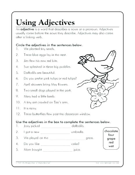 Free Adjective Worksheets Grade For Adjectives Second Graders