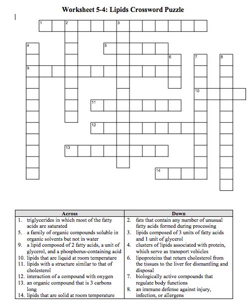 Solved  Worksheet 5
