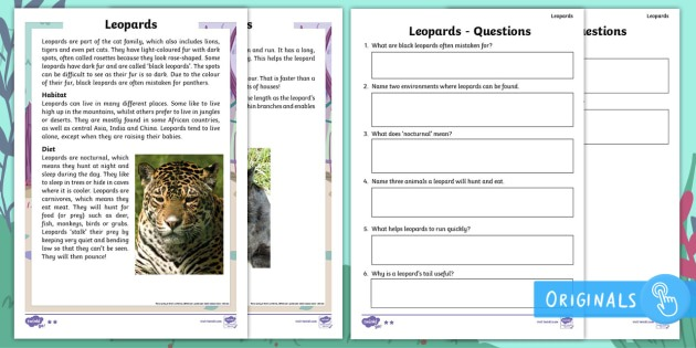 Year 2 Leopards Differentiated Comprehension Worksheets