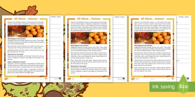 Autumn Differentiated Reading Comprehension Worksheet   Worksheet Pack