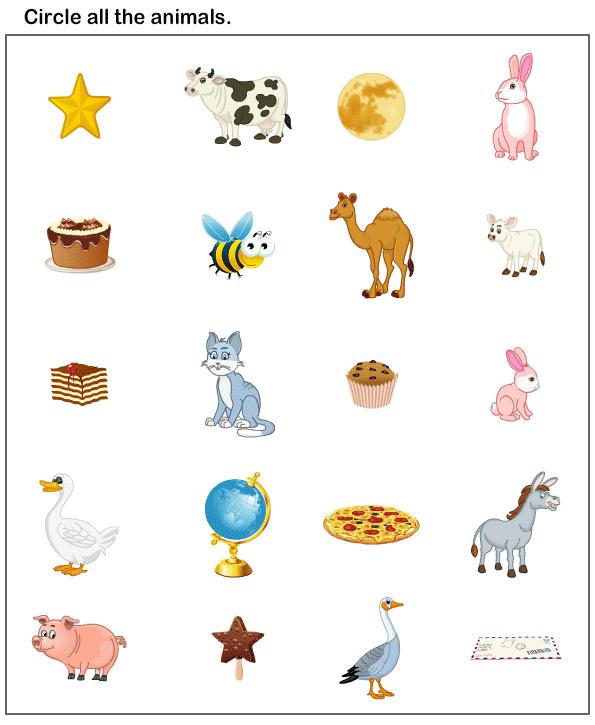 Wild Animals Preschool Worksheet