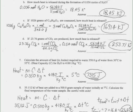 15 Amazing Stoichiometry Practice Worksheet Answer Key Aplicable