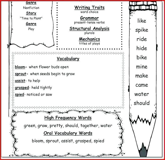 Math Facts For 1st Grade – Ozerasansor Com